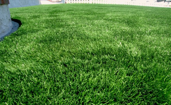 Natural-looking-fake-grass