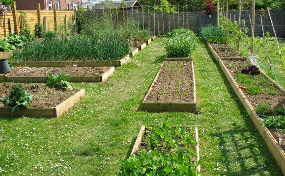 Image of: Perfect Backyard