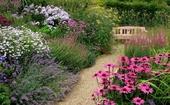 Cottage garden ideas combined