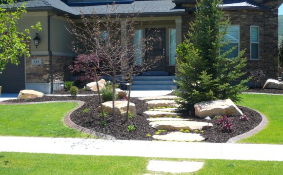Landscaping and Front yard