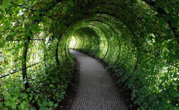 Garden Garden Pictures