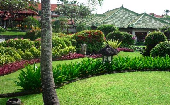 Garden Plant Ideas Tropical