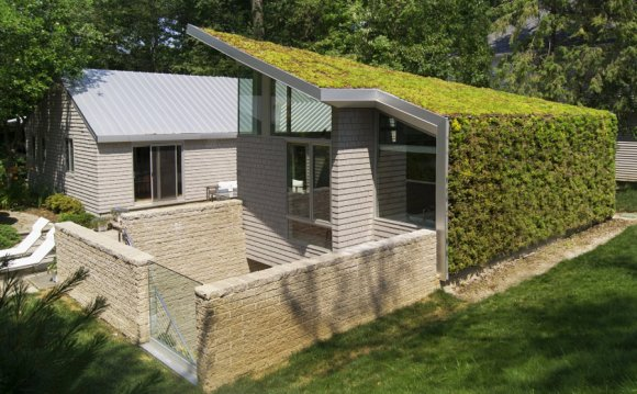 House with Vertical Garden