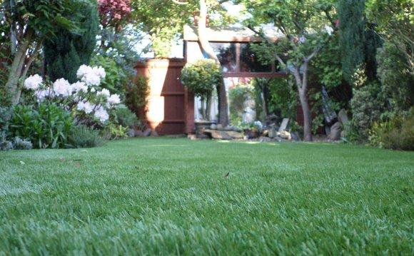 Show Lawn