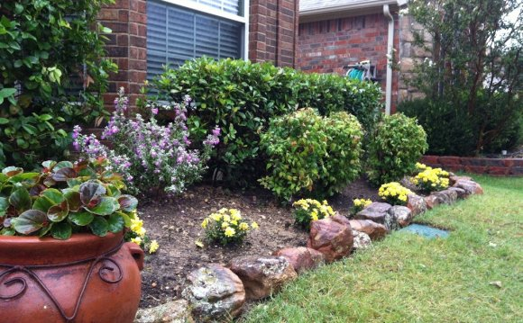 Inexpensive front yard