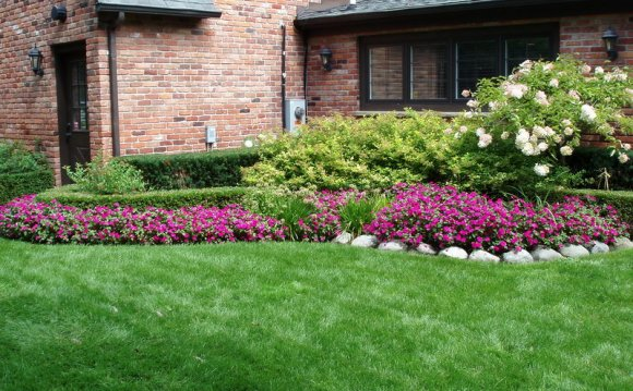 Charming Landscaping Ideas For