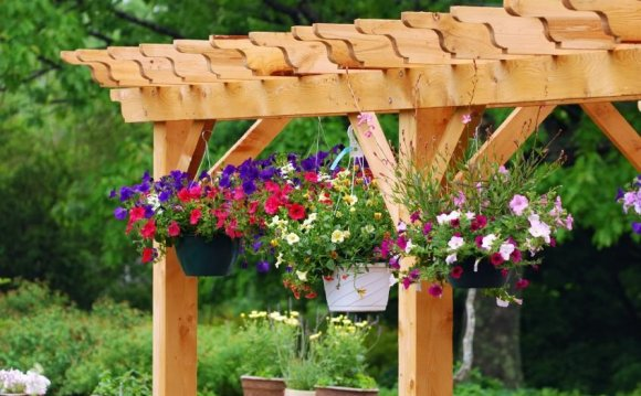 Pictures of container garden