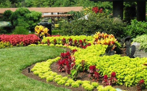 Lawn, Landscape & Garden