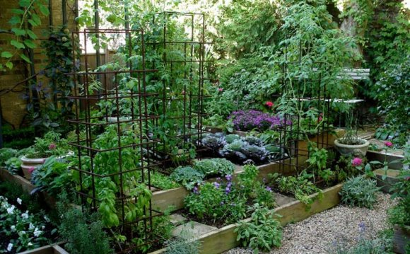 Bed garden layout pictures