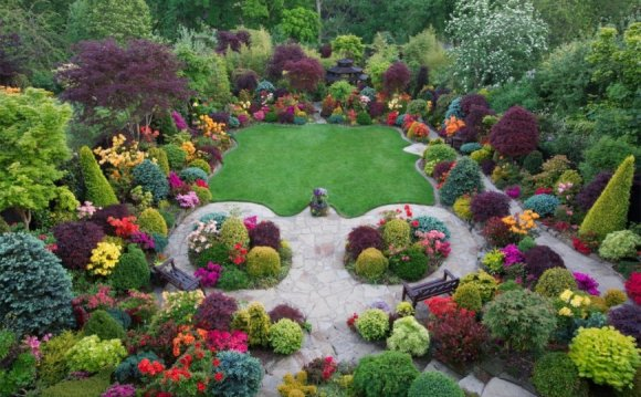 Image result for shrubberies
