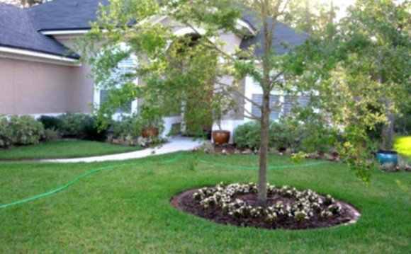 Front Yard Landscape Ideas The