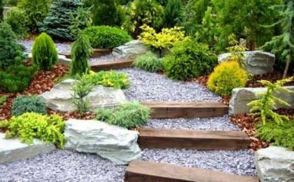 Www Landscaping Designs