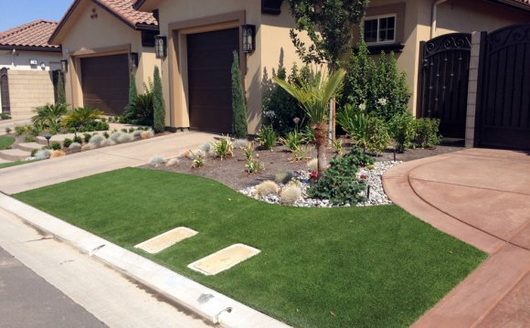 Artificial Grass front yard