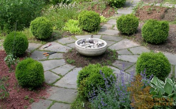 Backyard Garden Design Pictures