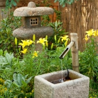 concrete trough fountain with lilies and moneywort in a Japanese-style garden