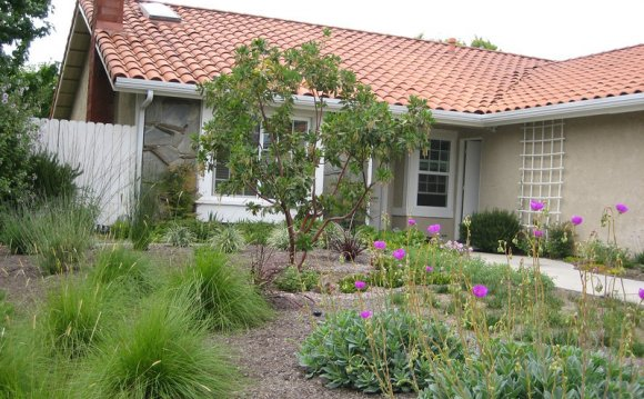 Drought Tolerant Landscape Design ideas