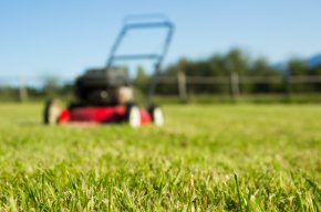 Five Ways Artificial Landscaping Benefits Your Property - Artificial Grass Liquidators