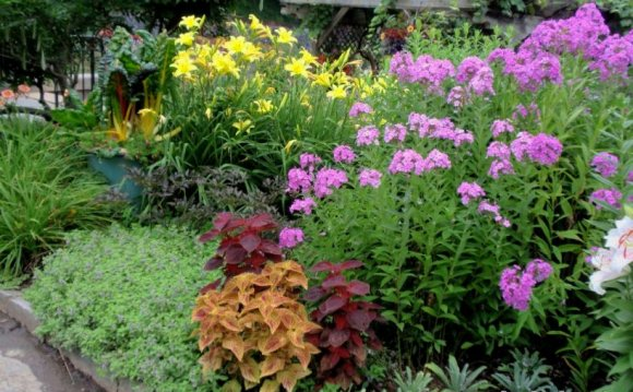 Flower garden ideas for small Yards