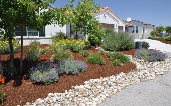 Rock Garden Design for front Yards