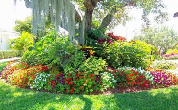 Landscaping ideas around trees