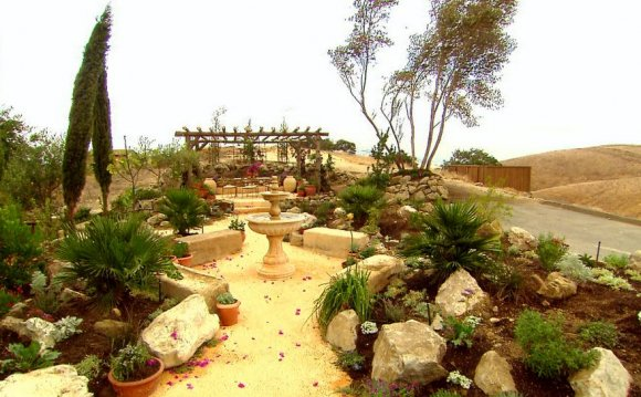 DIY Network Landscaping