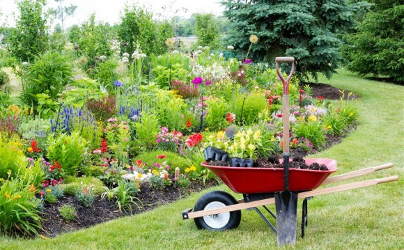 Charmant What Products Do Garden And Landscape Supply Businesses Carry?