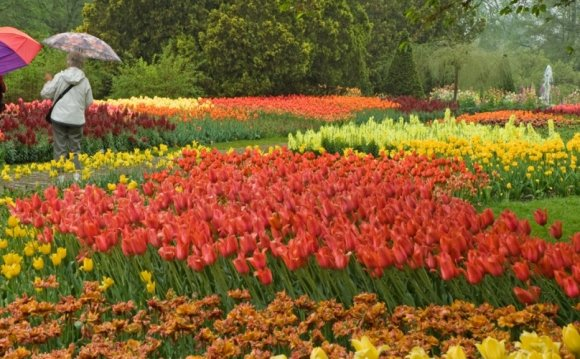 Pictures Of flower Garden