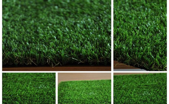 Outdoor Turf Grass
