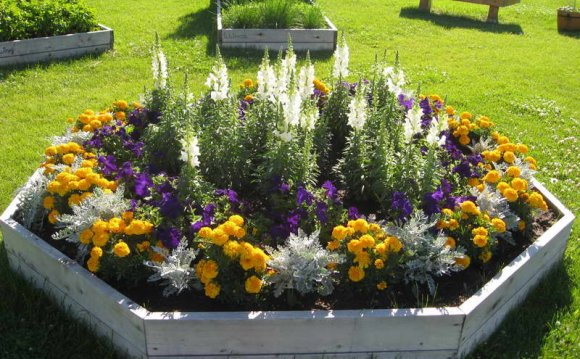Planting beds Design ideas