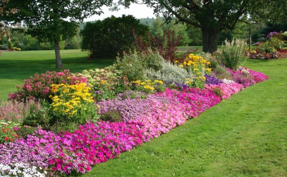 Pretty Flowers Beds Ideas Residential Landscaping