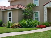 Front yard Landscaping Simple