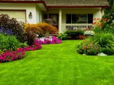 Home and Garden Landscape Design