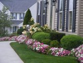 Houzz front yard Landscaping