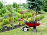 Landscaping Companies in Waldorf MD