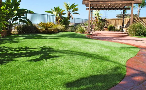 Where Can I Get Artificial Grass?